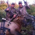Great Work Bull Elk