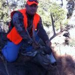 Nice Mule Deer