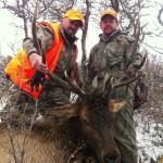 1st Bull Elk