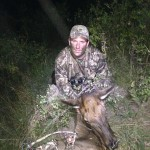 Archery Cow Elk
