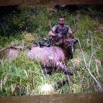 Drop Camp Archery Bull Elk