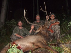 Bow Hunting Colorado Elk Camp Outfitters