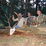 Guided Elk Hunt