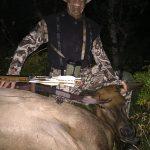 Traditional Archery Elk Hunt