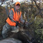 Guided elk hunting trips