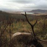 Hunting Unit 71 Colorado