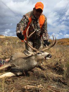 Mule Deer Unit 71