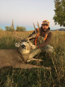 Mule Deer Colorado Hunt