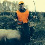 Bull Elk Hunting Colorado